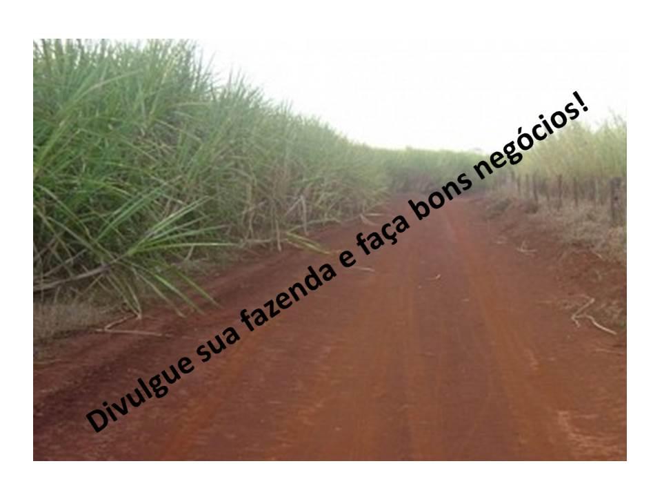 Venda - SP   Fazendas São José do Rio Preto - SP